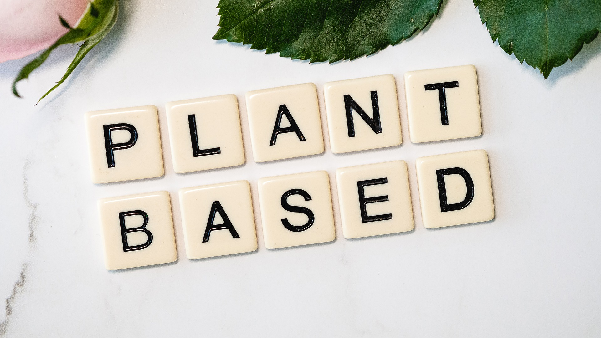 Is going plant-based a healthier option?